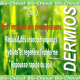 Dermios