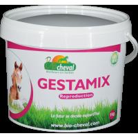 Gestamix