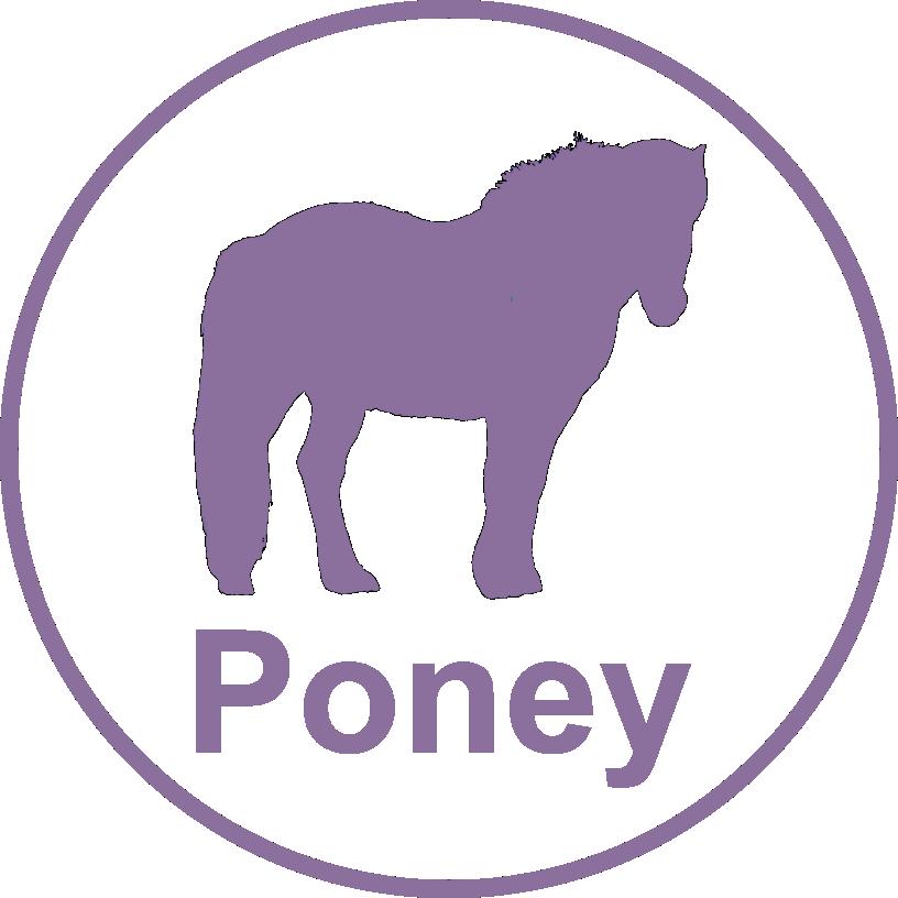 Poney.png